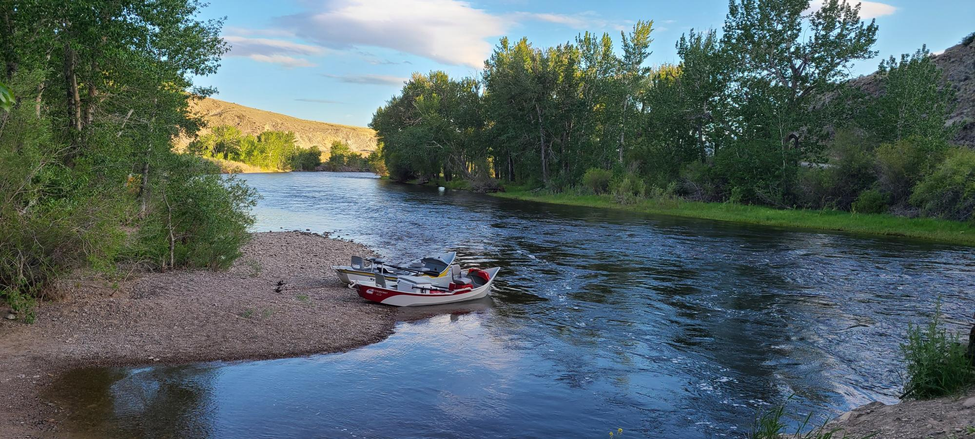 big hole river fly fishing